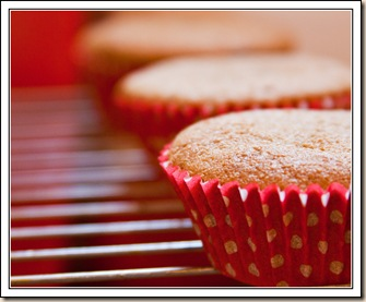 ginger spice cupcakes