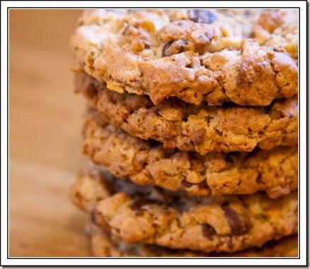 compost cookies 1