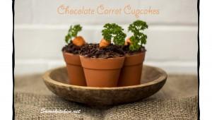 Choc carrot cupcakes 2