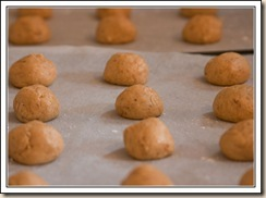 coffee biscuits1