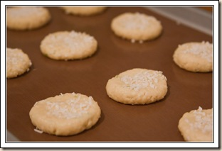 coconut&lime biscuits raw