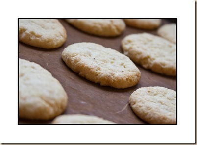 almond & lemon biscuits cooling
