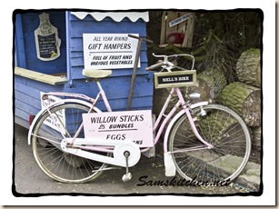 Fanny's Farm bike