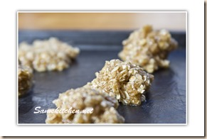 Oat coconut crunchies tray